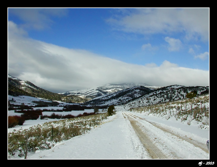 Bloomington Canyon In Snow