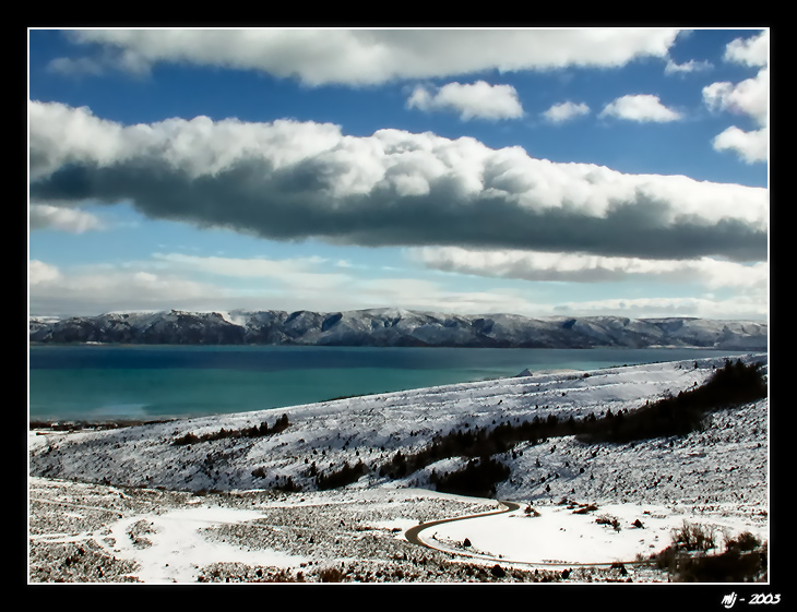 Blues of Bear Lake